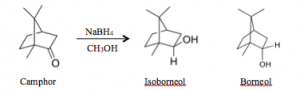 hypochlorite oxidation of endo borneol to camphor essay
