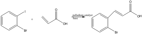net-reaction