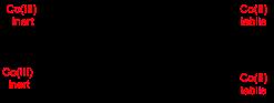 Figure-7-Jenkinson