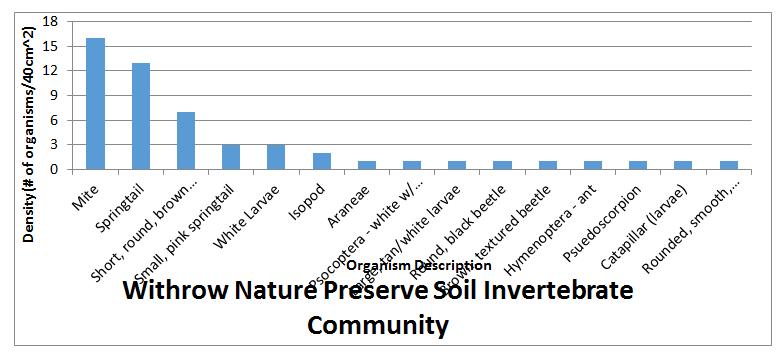 soil invertebrates
