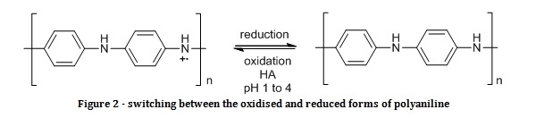 oxidised and reduced forms of polyaniline