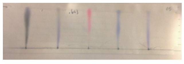 Chromatograph 4