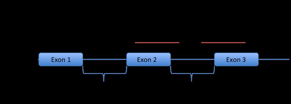sequence-comparison