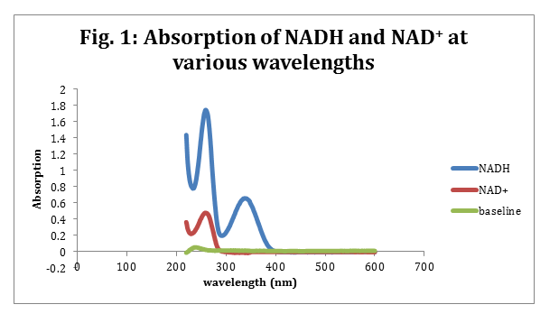 Absorption of NADH