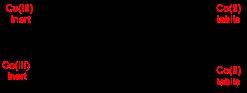 Figure-6-Jenkinson