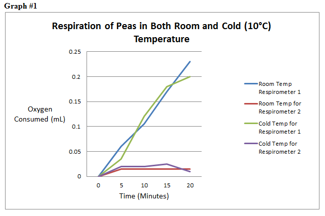 affect of temperature on yeast respiration The yeast will produce the most cellular respiration at an optimum temperature this temperature will be at a normal room temperature if the temperature of the environment surrounding the yeast is too low, the rate will decrease, because the molecules involved in the process of cellular respiration will slow down resulting in lesser rate.