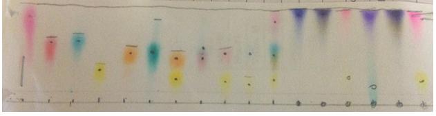 Chromatograph 1