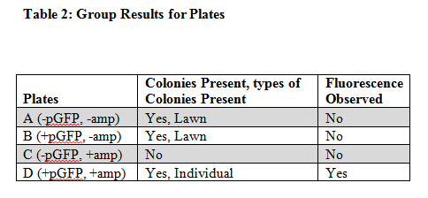 Group Results for Plates
