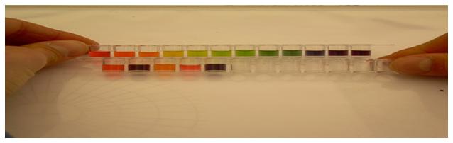 calorimetric pH meter 2