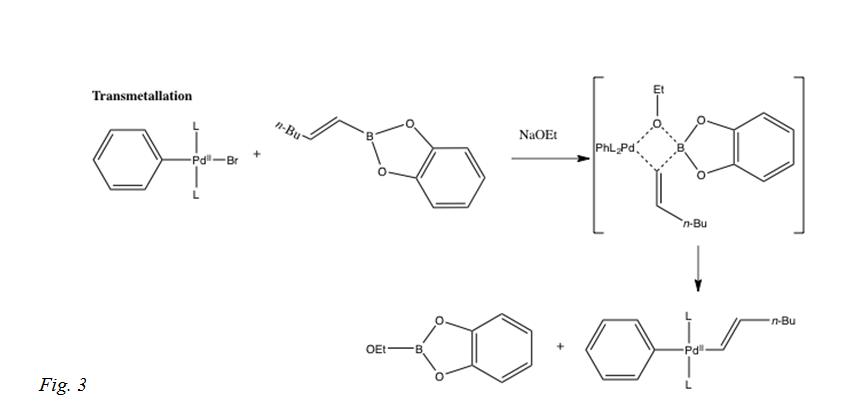 Suzuki Reaction Procedure